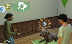 the sims 4 vet clinics guide cats and dogs expansion