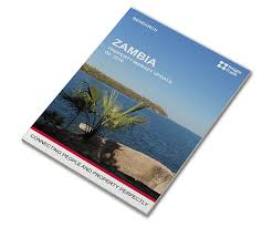 canap駸 italiens contemporains commercial residential properties in zambia estate agents