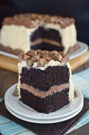 best ever chocolate peanut butter cake peanut butter frosting