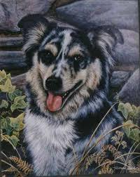 australian shepherd 2016 calendar australian shepherd archives national purebred dog day