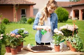 gardening picture flower garden and gardening care and tips