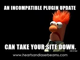 Memes Site - funny memes to celebrate our new site maintenance services steph