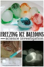 freezing ice balloons science investigation investigations