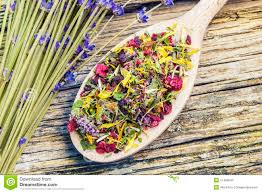 Flowers Near Me - natural dry herbal tea with meadow flowers near stock photo