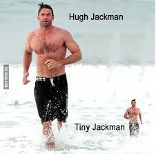 Hugh Jackman Meme - i pinimg com originals 81 d5 ca 81d5ca293756593274