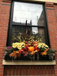Plants For Winter Window Boxes - windows box windows decorating best 20 christmas window boxes