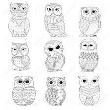 Hawk Owl Stock Photos U0026 Pictures Royalty Free Hawk Owl Images And