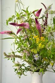 native plants fort myers 115 best florida native images on pinterest florida flowers