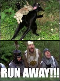 Monty Python Meme - damn is the caerbannog monty python know your meme