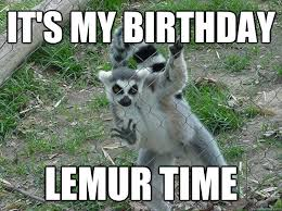Lemur Meme - it s my birthday lemur time libertarian lemur quickmeme