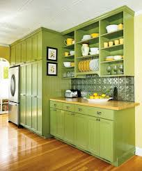 Green Kitchen Cabinets Traditional Kitchen Cabinets With White Kitchen Stove And Green
