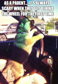 Driving School Meme - driving school memes best collection of funny driving school pictures