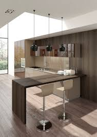 Contemporary Kitchen Contemporary Kitchen Laminate Lacquered High Gloss