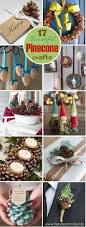 17 of the prettiest pinecone crafts you u0027ll ever see