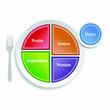 myplate nutrition cliparts free download clip art free clip