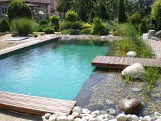 Natural Swimming Pool 19 Incredible Natural Swimming Pools Natural Swimming Pools