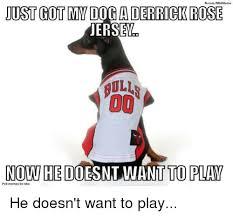 Derrick Rose Jersey Meme - 25 best memes about you rock meme you rock memes