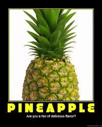 Ananas Pineapple Meme - demotivation of a pineapple by evil laughterdotcom on deviantart