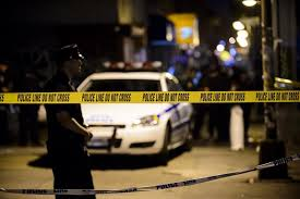 man stabbed slashed while walking dog in the bronx ny daily news