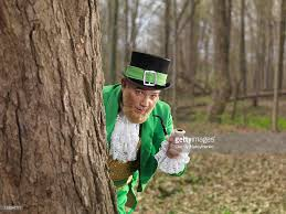 leprechaun stock photos and pictures getty images