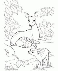 hunting coloring pages to print eliolera com