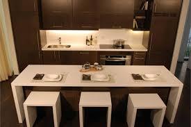 100 condominium kitchen design young modernist condominium
