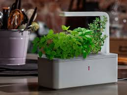 Kitchen Herb Garden Kit by High Tech Herb Garden Generous Magpie