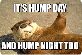 Sexy Hump Day Memes - meme maker heyyy sexy i luv u cant wait til ur home