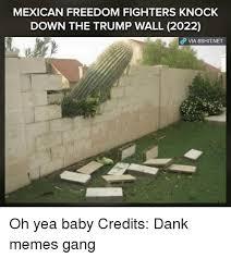Landscaping Memes - 25 best memes about meme gang meme gang memes