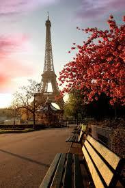 Paris Pictures News About Paris On Twitter