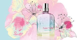 l occitane si e social cerisier pastel eau légère l occitane en provence perfume a