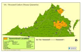 Richmond Virginia Map by Thousand Cankers Disease Tcd In Virginia