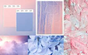 are pantone genderblurring with their colour of year oops we
