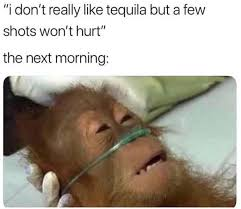 Funny Tequila Memes - i don t really like tequila but a few shots won t hurt 2018 nfl