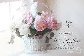 Shabby Flowers Shabby Chic Romantic Pink White Hydrangeas In Basket Paris