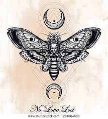 deaths hawk moth moons geometry stock vector 291864575