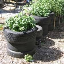 Container Gardening For Food - making gardening easier container gardening the approaching