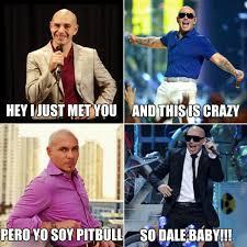 Pitbull Meme Dale - 64 best mr 305 images on pinterest pit bull pit bulls and pitbull