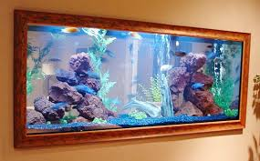 inside wall aquarium have the ultimate fish tank built into your