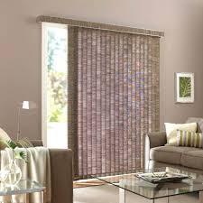 Curtains For Front Door Window Front Doors Front Door Window Coverings Ideas Bamboo Roll Up