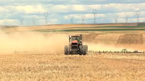 hodonice republic july 10 2016 farmers harvest grain