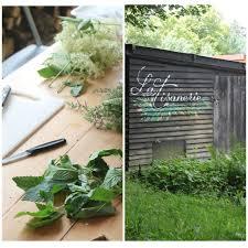 cuisine sauvage couplan cueillette et cuisine des plantes sauvages