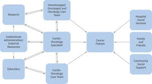 burgeoning cardio oncology programs jacc journal of the