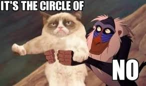 Lion King Meme - grumpy cat lion king memes yes memes