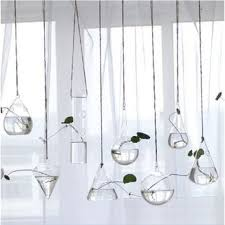 Hanging Wall Planter Best Hanging Wall Planters Products On Wanelo