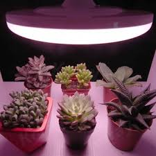 ufo led grow light 100 flicker free high cri 97 ufo led grow light full spectrum buy