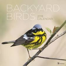 backyard birds big print 2018 wall calendar 619344320318