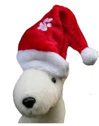 weihnachtsmütze für hund im hunde versandhaus