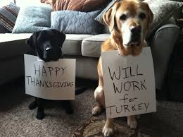 i wish you a happy thanksgiving 11 thanksgiving staples that are hazardous to pups barkpost