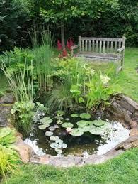 Fun Backyard Landscaping Ideas 57 Amazing Rock Garden Ideas For Backyard Garden Ideas And Gardens